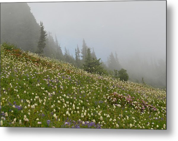 Floral Meadow Metal Print