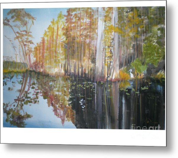 Florida Swamp Metal Print by Hal Newhouser
