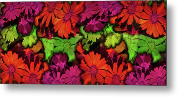 Flower Path Metal Print by Efrat Fass