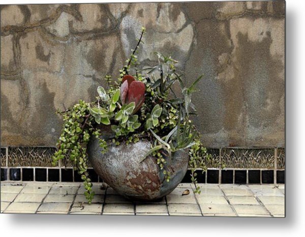 Flower Pot Metal Print by Viktor Savchenko