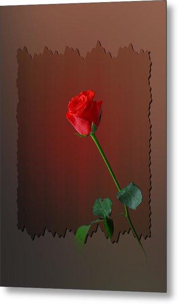 Flower Two Metal Print by Deepak Pawar