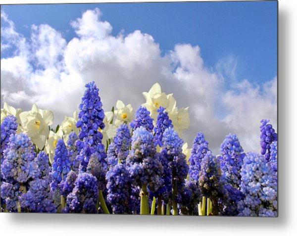 Flowers And Sky Metal Print
