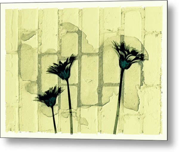 Flowers And The Brick Wall Metal Print by Susan Stone