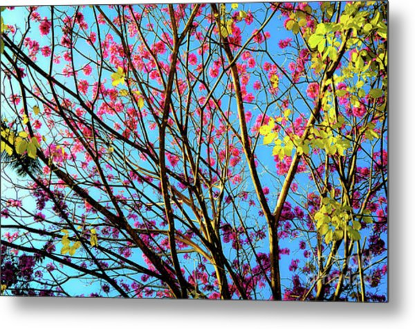 Flowers And Trees Metal Print