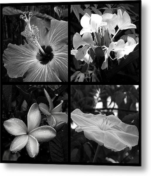 Flowers Metal Print by Andre Panatto