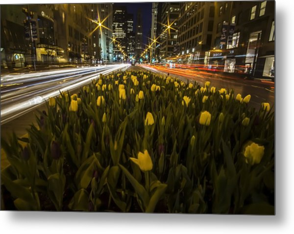 Flowers At Night On Chicago's Mag Mile Metal Print