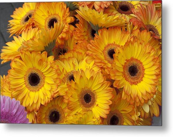 Flowers Bo71 Metal Print by Charles  Ridgway