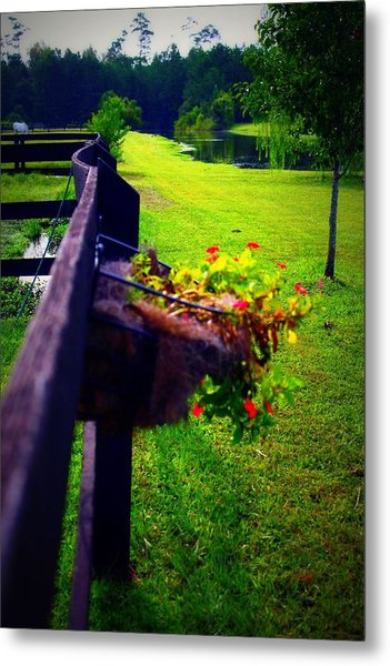 Flowers On A Fence Metal Print by Jill Tennison