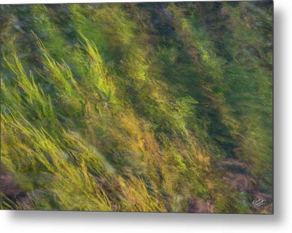 Flowing Luminescence Metal Print by Leland D Howard