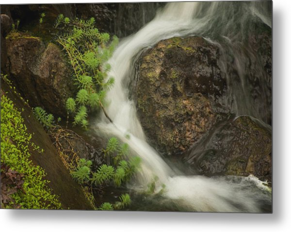 Metal Print featuring the photograph Flowing Stream by David Coblitz