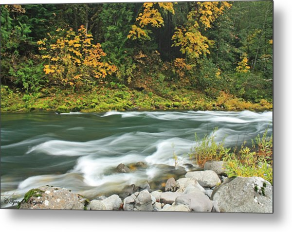 Flowing Umpqua River Metal Print
