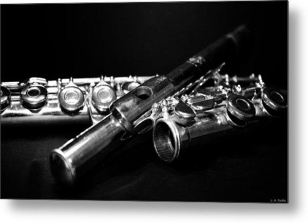 Flute Series I Metal Print