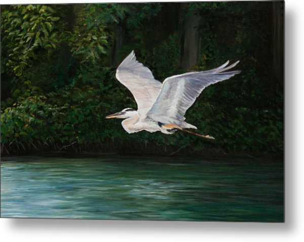 Fly By Metal Print