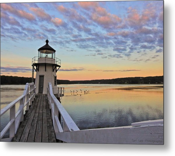 Fly By Morning Metal Print