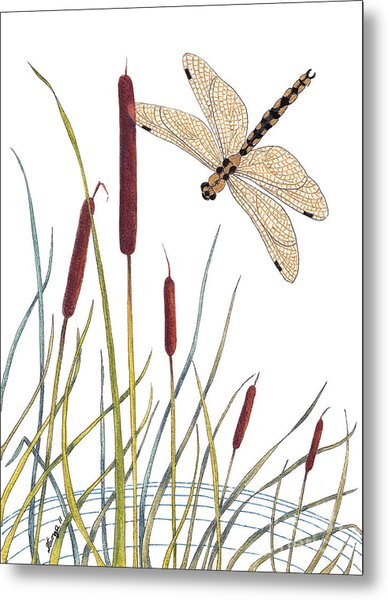 Fly High Dragonfly Metal Print