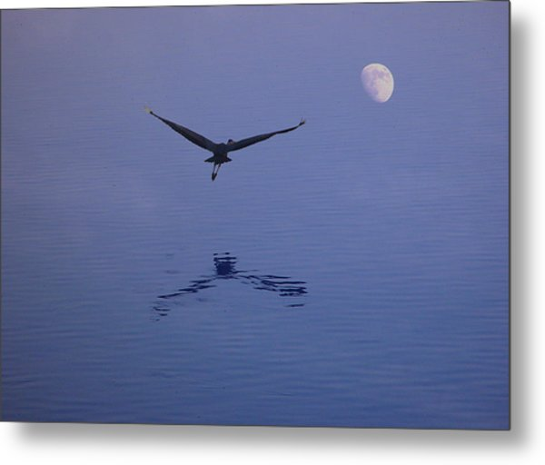 Fly To The Moon Metal Print by Eric Workman