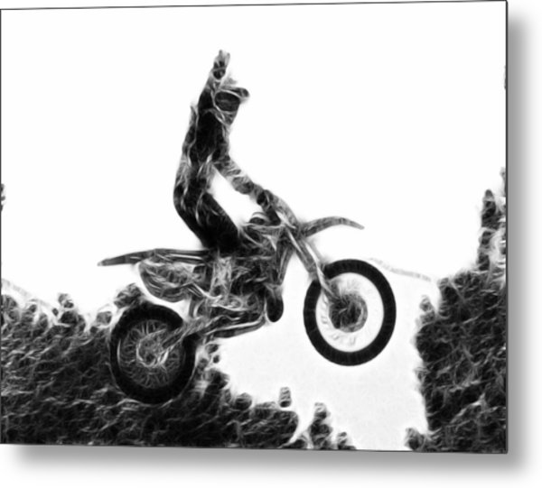 Flying 1 Metal Print