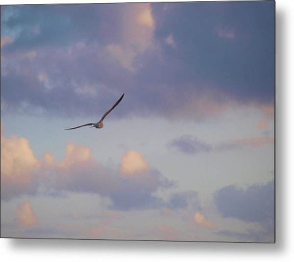 Flying Away Metal Print
