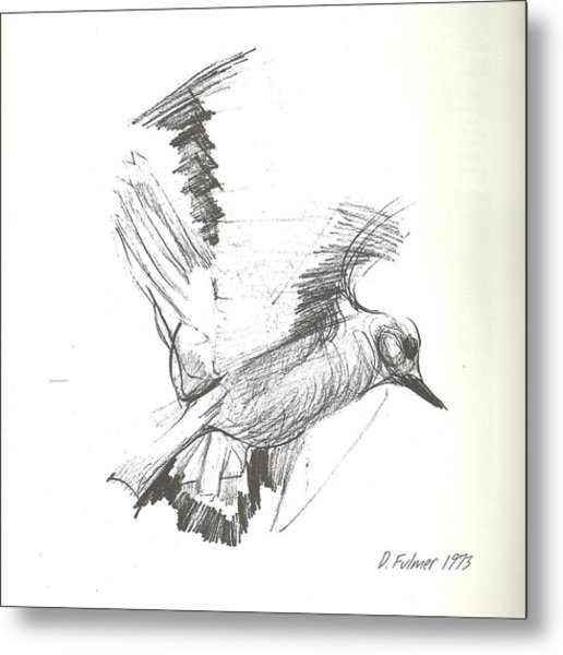 Flying Bird Sketch Metal Print