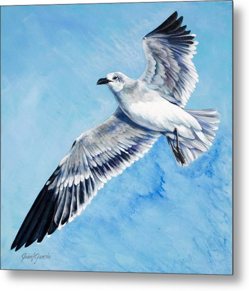 Flying Gull Metal Print