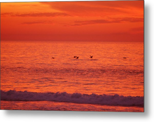 Flying Low Metal Print by Jean Booth
