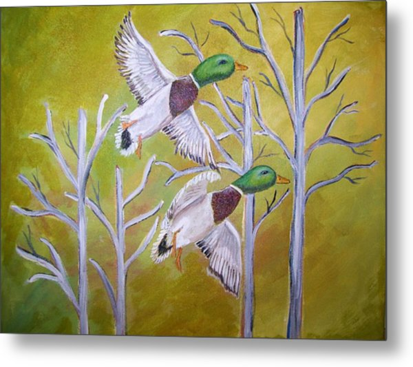 Flying Mallards Metal Print