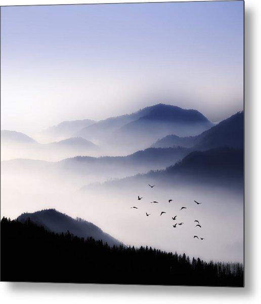 Flying Over The Fog Metal Print