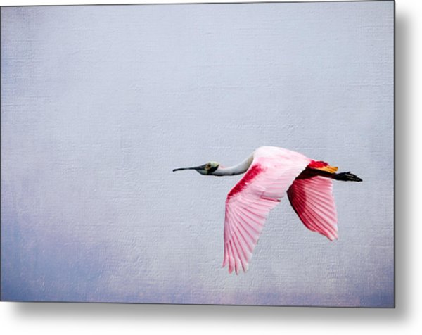 Flying Pretty - Roseate Spoonbill Metal Print