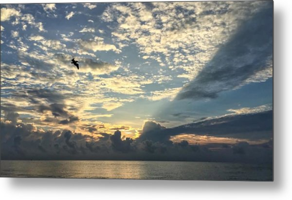 Flying To The Left Metal Print