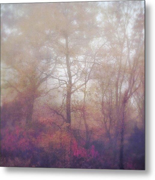 Fog In Autumn Mountain Woods Metal Print