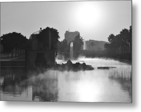 Fog In Park Monochrome Metal Print