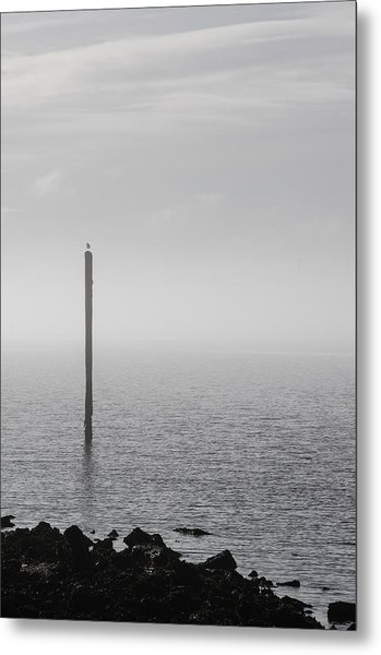 Metal Print featuring the photograph Fog On The Cape Fear River On Christmas Day 2015 by Willard Killough III