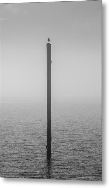 Metal Print featuring the photograph Fog On The Cape Fear River by Willard Killough III