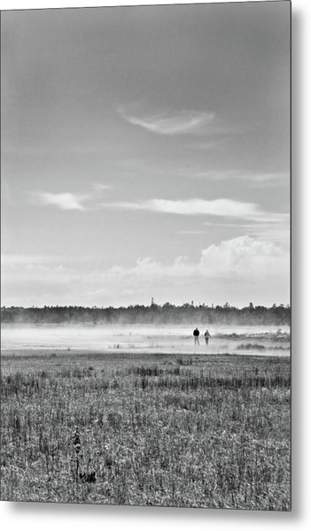 Foggy Day On A Marsh Metal Print