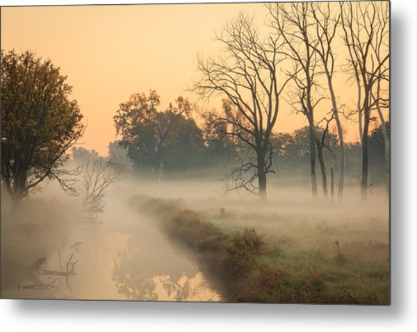 Foggy Fall Morning On Gary Avenue Metal Print