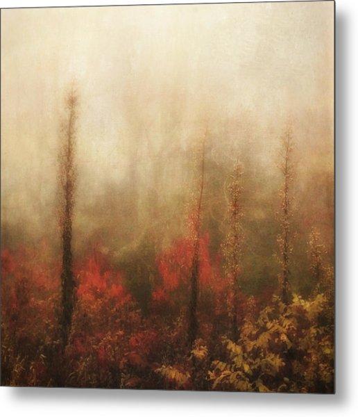 Foggy Fall On The Parkway Metal Print