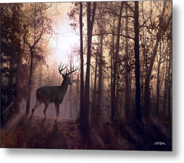 Foggy Morning In Missouri Metal Print