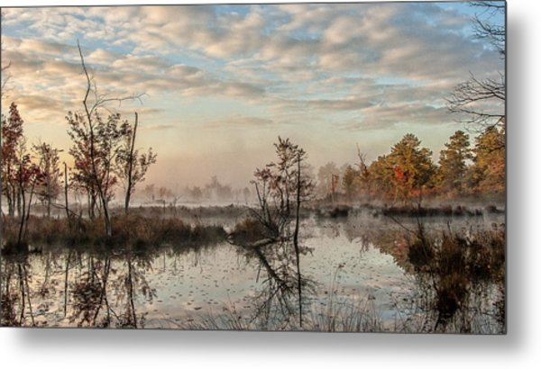 Foggy Morning In The Pines Metal Print