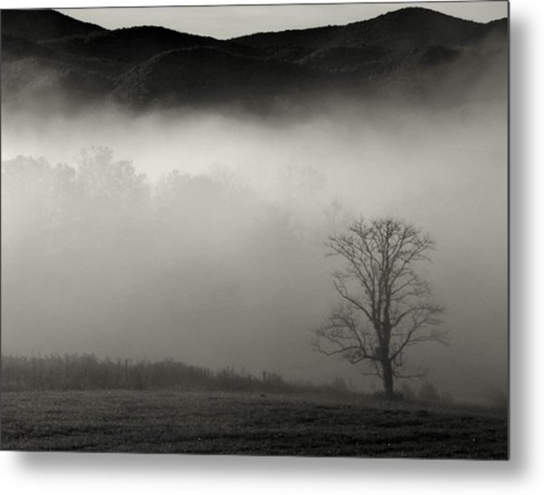 Foggy Mountain-tennessee Metal Print