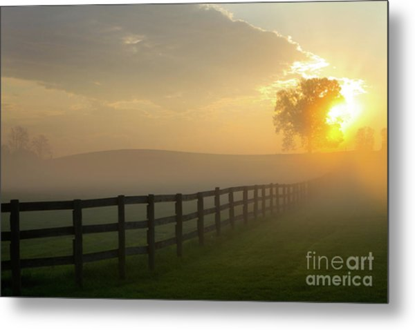 Metal Print featuring the photograph Foggy Pasture Sunrise by Steven Frame