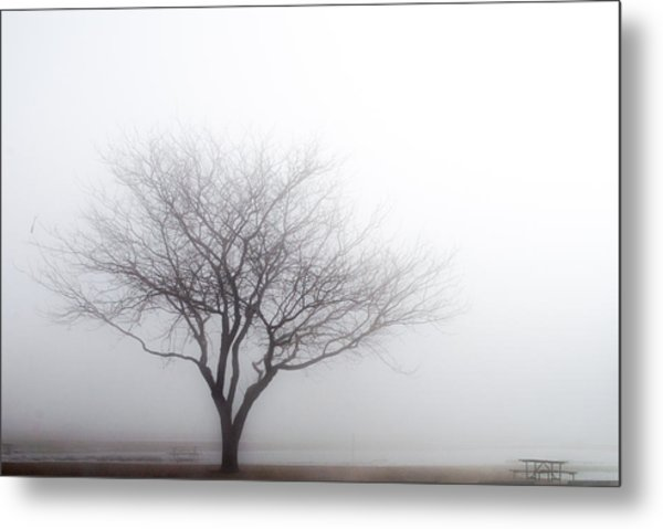 Foggy Picnic Metal Print