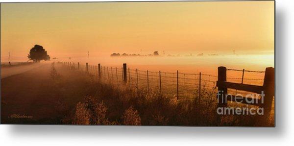 Foggy Sunrise On Hawkins Rd Metal Print