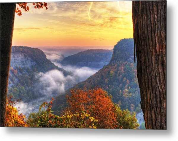 Foggy Sunrise Over Letchworth State Park In New York Metal Print