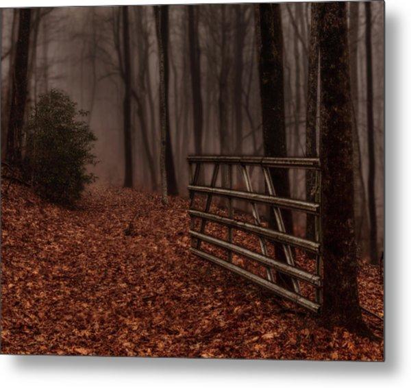 Foggy Trail Metal Print