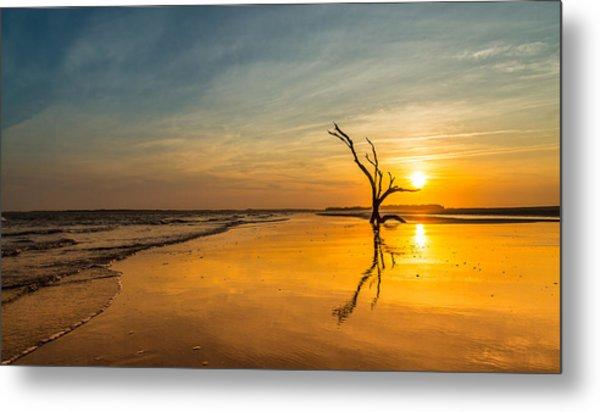 Folly Beach Skeleton Tree At Sunset - Folly Beach Sc Metal Print