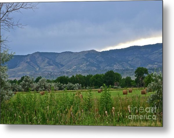 Foothills Of Fort Collins Metal Print
