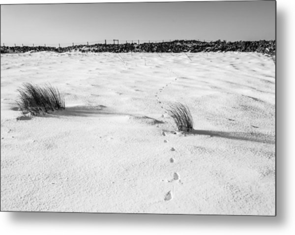 Footprints In The Snow I Metal Print
