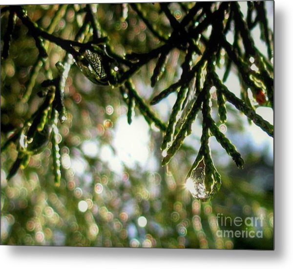 For The Love Of Bokeh 2012 Metal Print