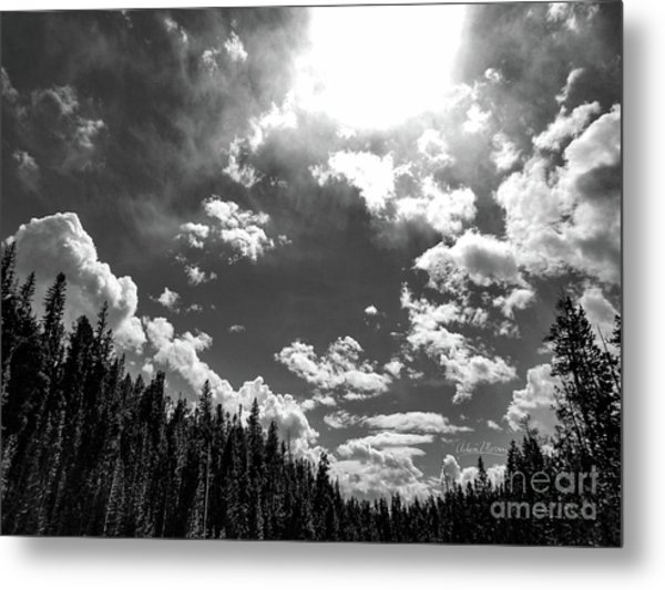A New Day, Black And White Metal Print