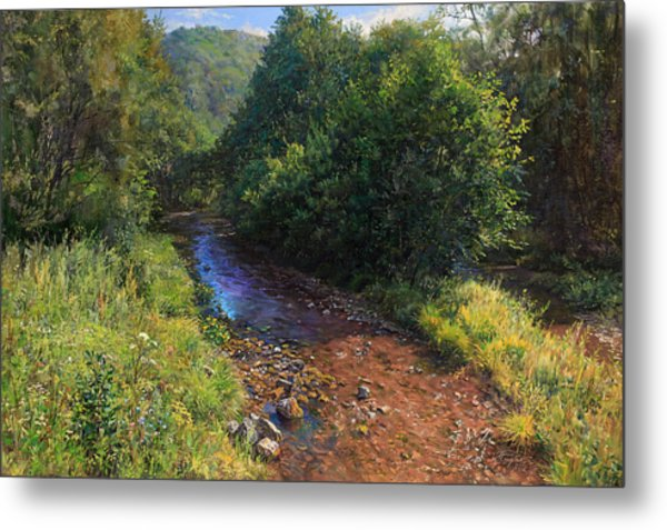 Forest River Summer Day Metal Print